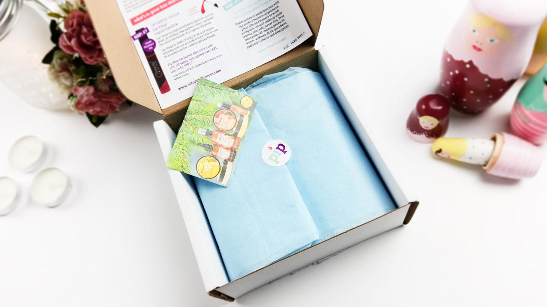February Pip Box